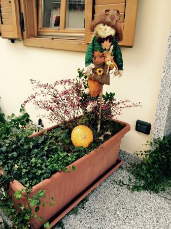 Bed and Breakfast Noemi: Hallowen 2015 ~ dettagli
