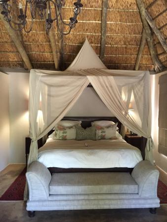 Amakhala Game Reserve, Republika Południowej Afryki: photo4.jpg