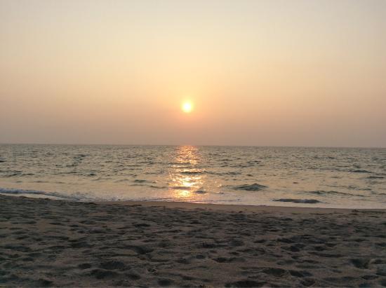 Marari Dreamz: photo2.jpg