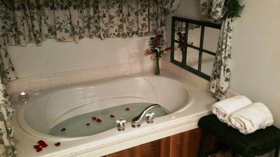 Canandaigua, NY: Ivy Solace whirlpool tub