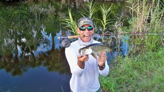 Fun venues offered here at ent airboats swamp buggy for Fly fishing miami