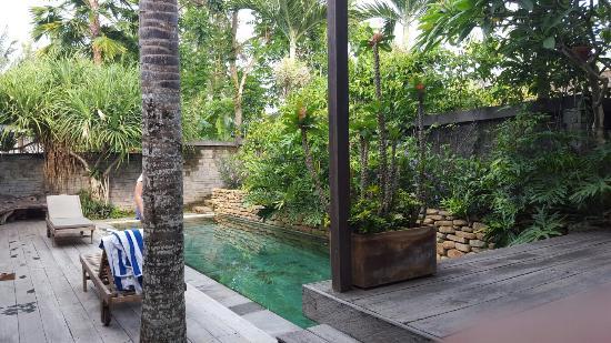 Mas, Indonesia: 20160130_080350_large.jpg