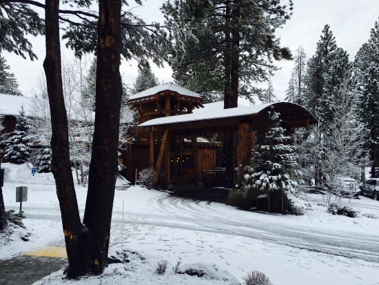 The Cedar House Sport Hotel: Smart mountain design. I love the golden wood.