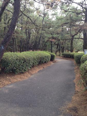 Awakigaharashinrin Park, Shimin no Mori