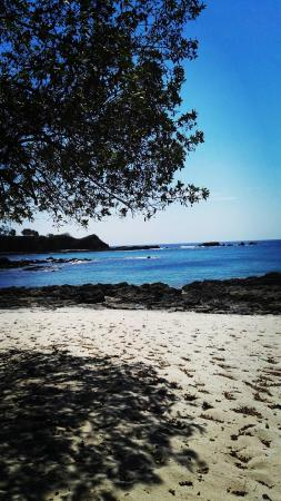 San Juanillo, Costa Rica: IMG_20160129_122758_large.jpg