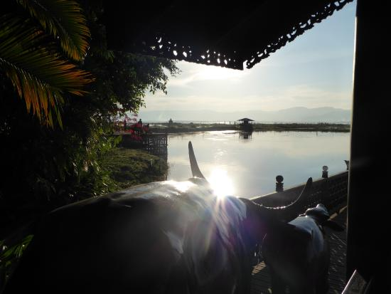 Inle Resort & Spa Photo