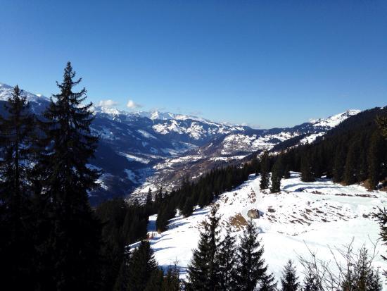 Davos Klosters Ski Resort: Kızak pisti çok iyi ,ancak 1 saat sürüyor iniş:)