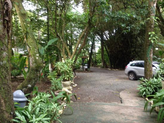 Foto de Camarona Caribbean Lodge