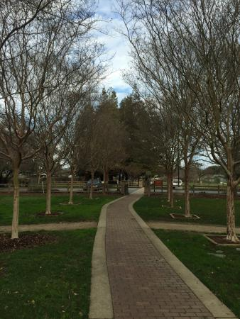 Concord, CA: Markham Nature Park and Arboretum