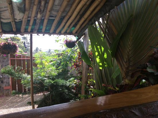 Calibishie, Dominica: View from eatery onto front of the property