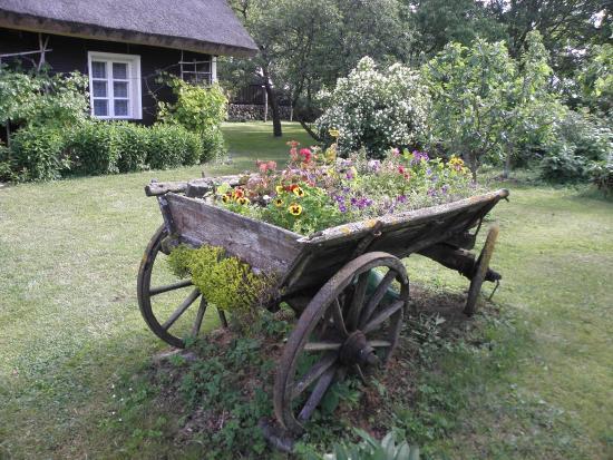 Saaremaa Φωτογραφία