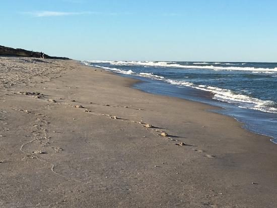 Canaveral National Seashore: Pristine beach on a January late afternoon visit