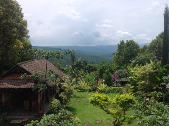 Karangsari Guest House: View from room