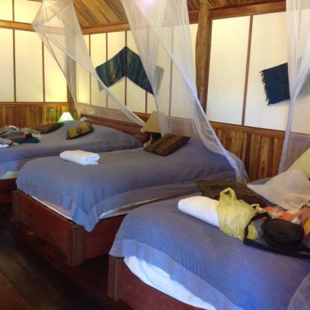 bedroom picture of thongbay guesthouse luang prabang tripadvisor rh tripadvisor ca