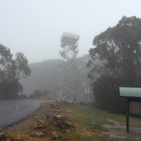 Warburton, Australia: Tower starting to disappear in the mist