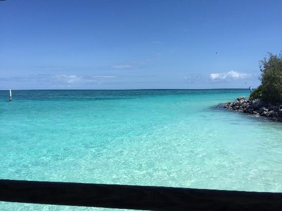 Heron Island Photo