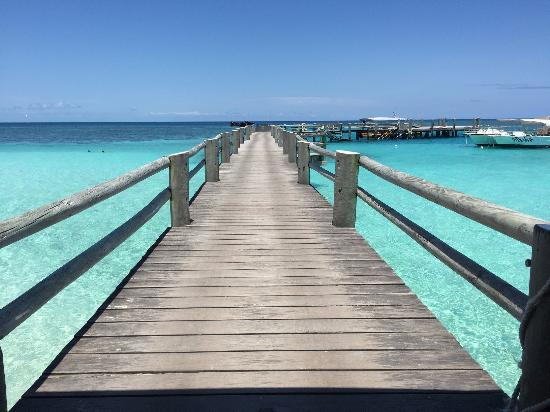 Pool - Heron Island Photo
