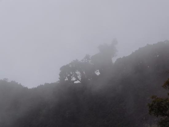 Bajos del Toro Foto