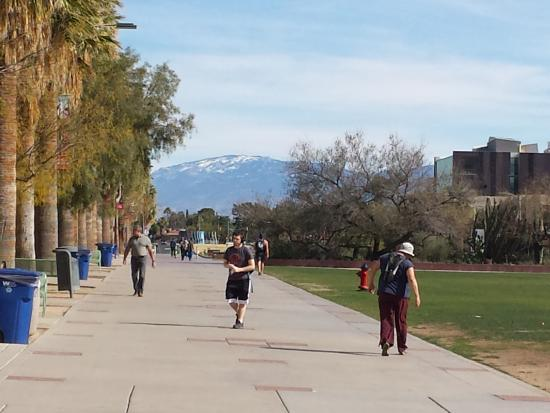University of Arizona Photo