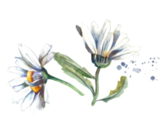 Tewantin, ออสเตรเลีย: Fleur