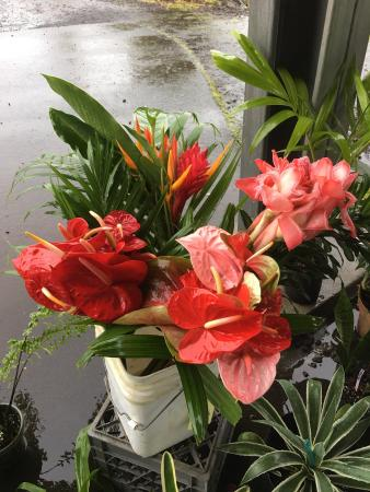 Mountain View, Hawaje: Breakfast time at the Hilo Coffee Mill and the flowers are from the small Farmers market in it's
