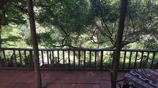 Westville, Sudáfrica: 20160129_141939_large.jpg