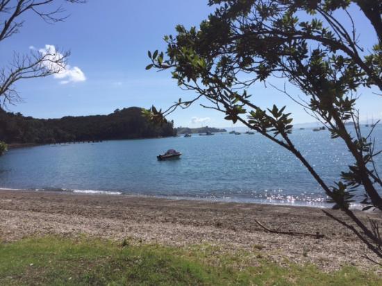 Obraz Wyspa Waiheke