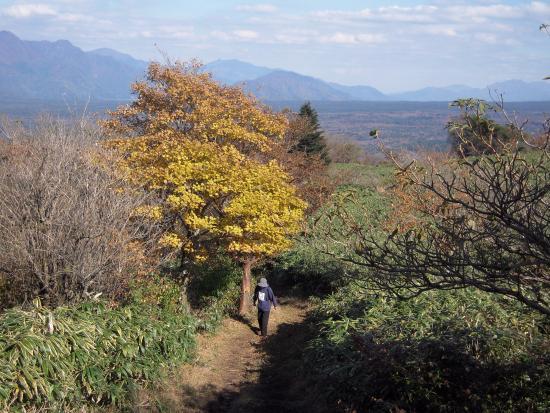 Yamanashi Prefecture, Japón: 登山道
