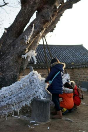 Andong, Νότια Κορέα: 안동 하회 마을