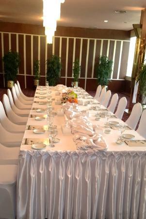 Baron Hotel Heliopolis Cairo : Meeting Room