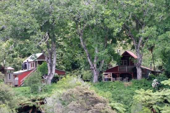 The Flying Fox: Cottages on the river bank