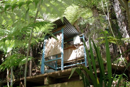 Wanganui, Nueva Zelanda: Bush Shower