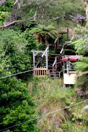 Wanganui, Nueva Zelanda: The Flying Fox