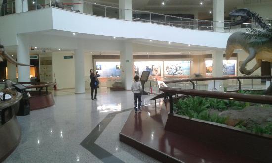 Tabiat Tarihi Müzesi - Picture of Tabiat Tarihi Muzesi ...