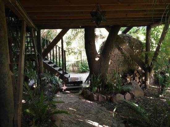 The most magical little treehouse nestled between a forest like garden in the middle of Greyton.