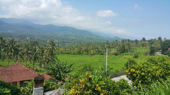Mayong Village Tracking Experience: IMG-20160112-WA0006_large.jpg