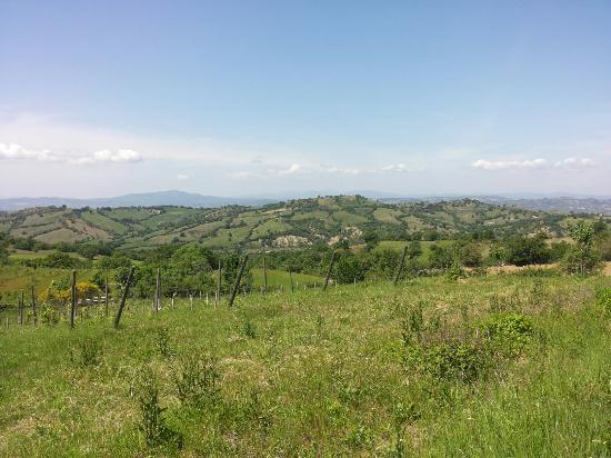 Roccalbegna, Italia: 20150509_132928_large.jpg