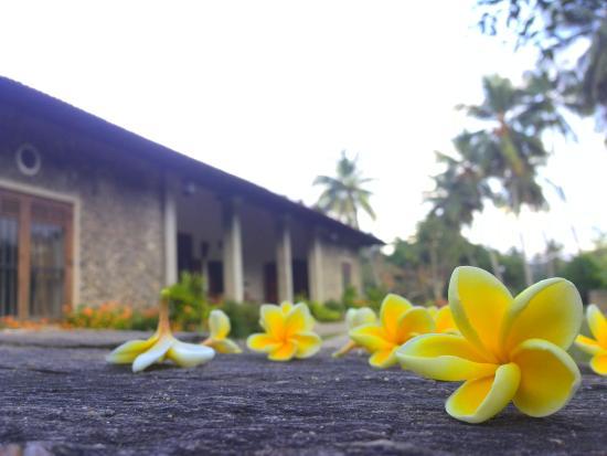 Kundasale, Sri Lanka: kandy