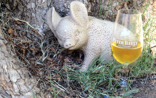 Calitzdorp, Zuid-Afrika: Peter Bayly Wines
