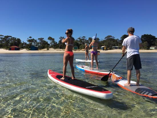 Rosebud, Αυστραλία: SUP FUN 😀