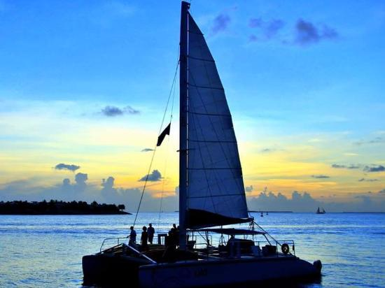 Econo Lodge Oceanfront: Relaxing sailboat charters available for rental at the nearby marina