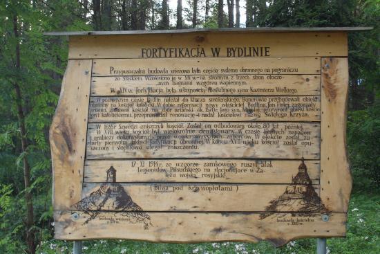 Castle Ruins in Bydlin