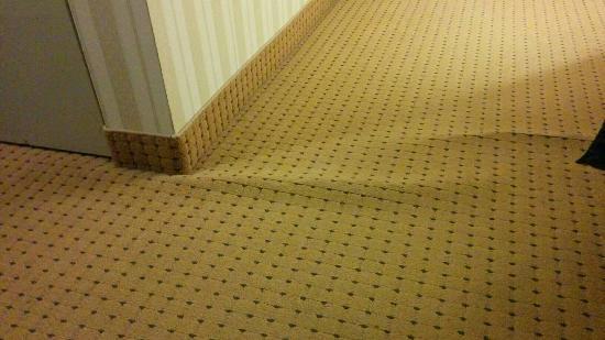 Quality Hotel & Suites: Hôtel à petit prix. Meubles inadéquats, tapis mal posés. Points positifs : accueil aimable, rest