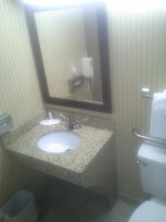Microtel Inn & Suites by Wyndham Charleston South Photo