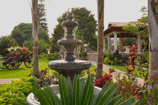 La Buena Vibra Retreat & Spa: Water Fountain