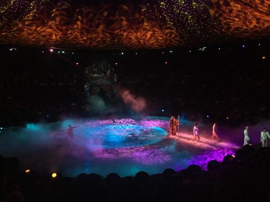 Le Reve - The Dream - Picture of Le Reve - The Dream, Las Vegas ...