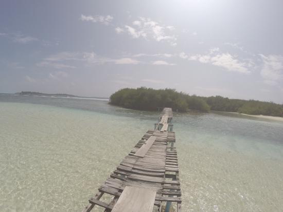 Thulusdhoo Island : photo6.jpg