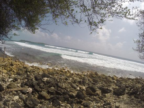 Thulusdhoo Island : photo7.jpg