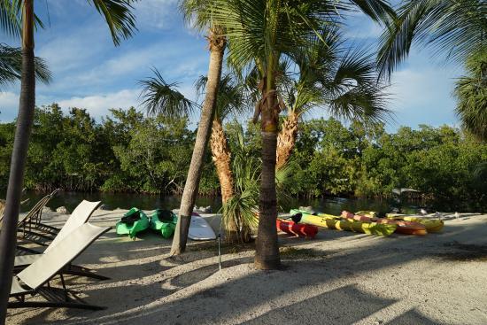 Hampton Inn Key Largo Photo