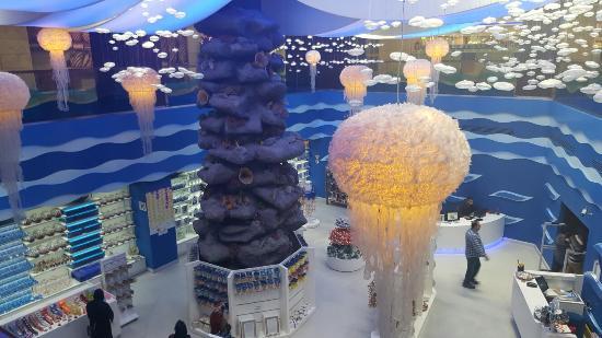 Aqua Vega Akvaryum - Picture of Aqua Vega Aquarium, Ankara ...